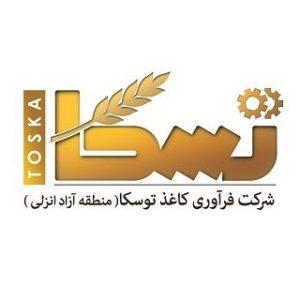 لوگوی شرکت تسکا
